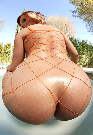 Free Big Ass Fishnet Porn Pictures